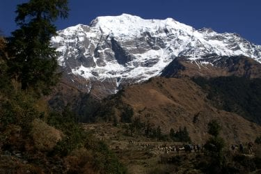 Trektocht Api Himal Far West Nepal Basiskamp Seti | Snow Leopard 039