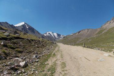 Kirgizië - Issy Kul Hemelse Bergen - fietsreis 2019 (18)   Snow Leopard