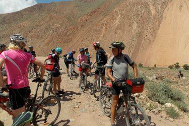 Kirgizië - Issy Kul Hemelse Bergen - fietsreis 2019 (8)   Snow Leopard