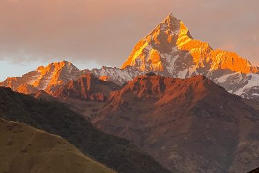Mardi Himal trektocht en/of beklimming kort (Annapurna, Nepal) | Snow Leopard (19)
