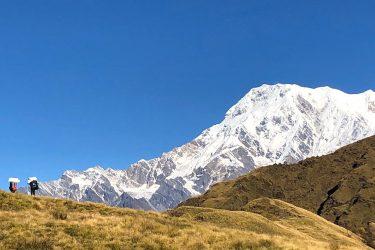 Mardi Himal trektocht en/of beklimming kort (Annapurna, Nepal) | Snow Leopard (4)