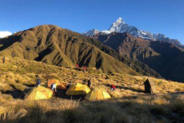 Mardi Himal trektocht en/of beklimming kort (Annapurna, Nepal) | Snow Leopard (5)