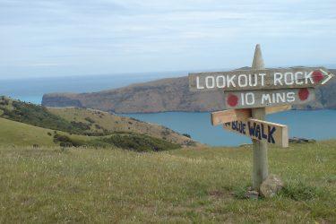 81 wandelen - NZ Nieuw-Zeeland - indiv autorondreis   Snow Leopard