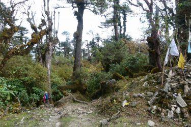 Trektocht Arunachal Pradesh Guwahati Aka Miji India   Snow Leopard 13