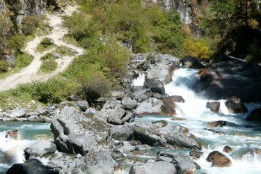 Trektocht Arunachal Pradesh Guwahati Aka Miji India   Snow Leopard 03