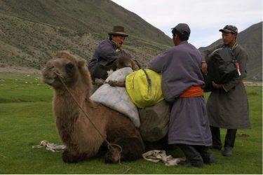 Mongolië wandelreis trektocht Khövsgöl , Khangai Nuruu, Gobi woestijn | HT & Snow Leopard 04