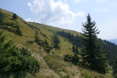 Wandelreis Oekraïne Lviv Karpaten Lybochora Kolochava | Snow Leopard 05