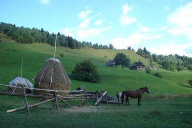 Wandelreis Roemenië Transsylvanische Alpen Retezat | Snow Leopard 6