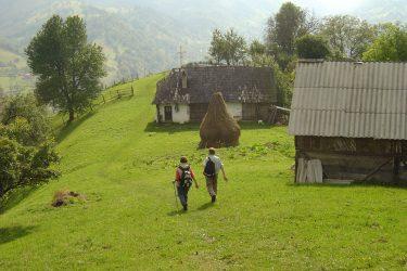 Wandelreis Roemenië Transsylvanische Alpen Retezat | Snow Leopard 7