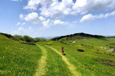 Montenegro - wandelreis Dinarische Alpen - Snow Leopard (21)