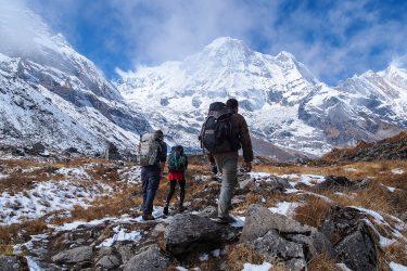 Nepal - Annapurna Sanctuary - trektocht 2019 Snow Leopard (1)