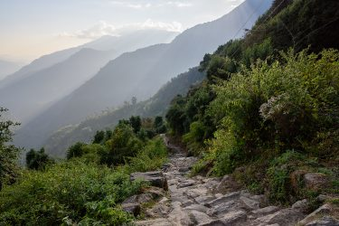 Nepal - Annapurna Sanctuary - trektocht 2019 Snow Leopard (3)