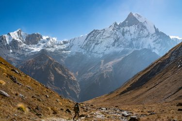 Nepal - Annapurna Sanctuary - trektocht 2019 Snow Leopard (5)