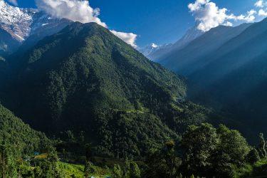 Nepal - Annapurna Sanctuary - trektocht 2019 Snow Leopard (7)