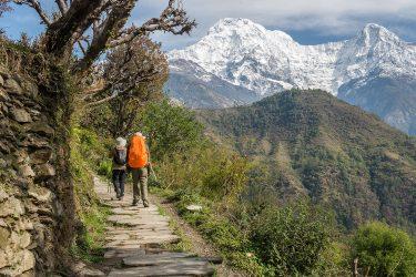 Nepal - Annapurna Sanctuary - trektocht 2019 Snow Leopard (9)