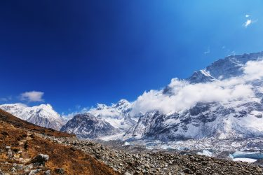 Nepal - Kangchenjunga - trektocht - Snow Leopard (1)