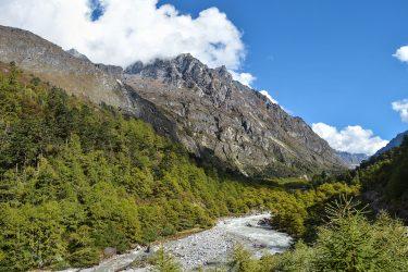 Nepal - Kangchenjunga - trektocht - Snow Leopard (5)