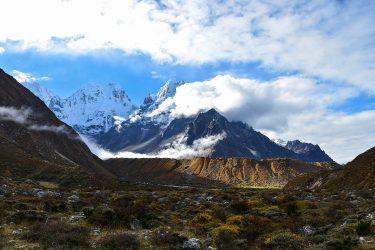 Nepal - Kangchenjunga - trektocht - Snow Leopard (6)