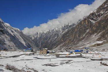 Nepal - Langtang - trektocht - Snow Leopard (18)