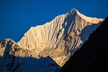Nepal - Langtang - trektocht - Snow Leopard (2)