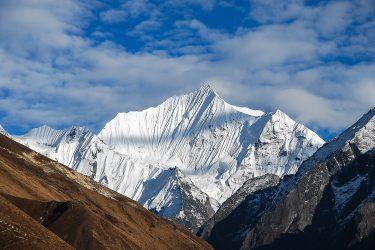 Nepal - Langtang - trektocht - Snow Leopard (25)