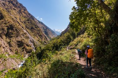Nepal - Langtang - trektocht - Snow Leopard (32)