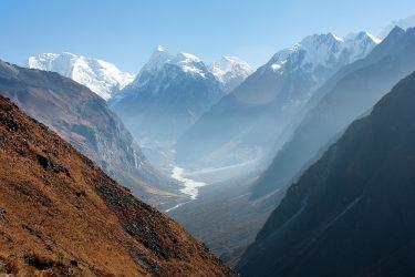 Nepal - Langtang - trektocht - Snow Leopard (4)
