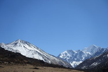 Nepal - Langtang - trektocht - Snow Leopard (42)