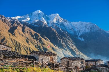 Nepal - Manaslu Rond - trektocht - Snow Leopard (4)