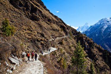 Nepal - Mt Everest - Khumbu trektocht - Snow Leopard (1)