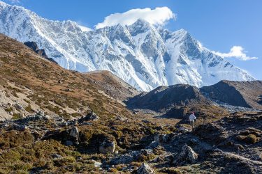 Nepal - Mt Everest - Khumbu trektocht - Snow Leopard (12)