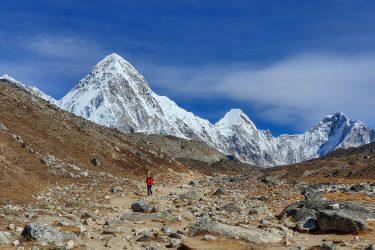 Nepal - Mt Everest - Khumbu trektocht - Snow Leopard (19)