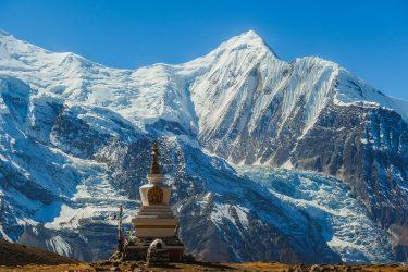 Nepal - Rond Annapurna - trektocht - Snow Leopard (12)