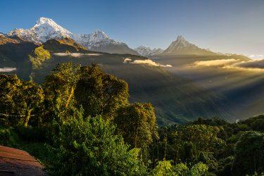 Nepal - Rond Annapurna - trektocht - Snow Leopard (19)