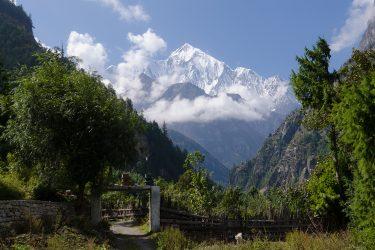 Nepal - Rond Annapurna - trektocht - Snow Leopard (20)