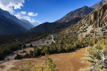 Nepal - Rond Annapurna - trektocht - Snow Leopard (21)