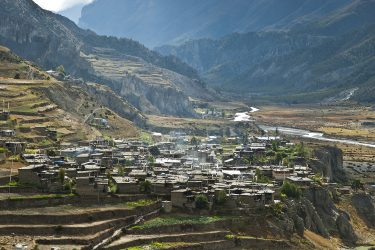 Nepal - Rond Annapurna - trektocht - Snow Leopard (3)