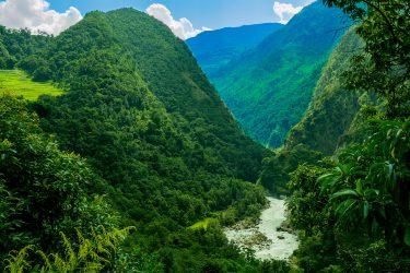 Nepal - Rond Annapurna - trektocht - Snow Leopard (5)