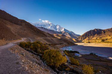 Nepal - Rond Annapurna - trektocht - Snow Leopard (6)