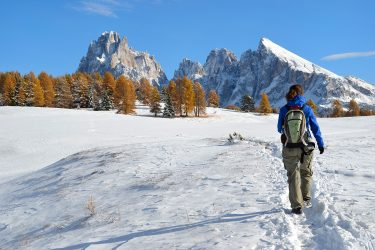 Sneeuwhaas - Italie - Dolomieten - sneeuwschoenwandelen reis (3) snow leopard