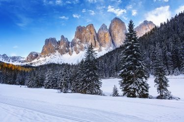 Sneeuwhaas - Italie - Dolomieten - sneeuwschoenwandelen reis (6) snow leopard