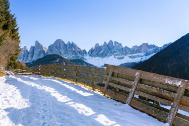 Sneeuwhaas - Italie - Dolomieten - sneeuwschoenwandelen reis (7) snow leopard