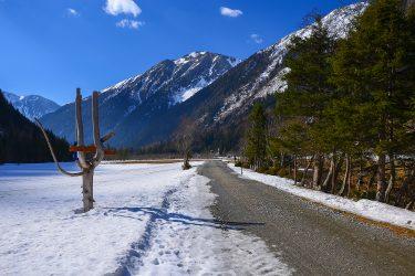 Sneeuwhaas - Oostenrijk - Karnten Mallnitz - sneeuwschoenwandelen reis (2) snow leopard