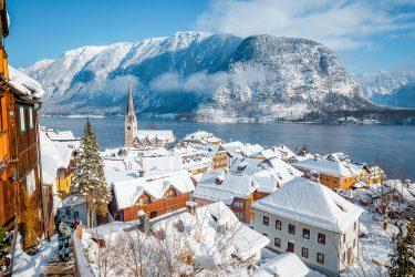 Sneeuwhaas - Oostenrijk - Salzkammergut - sneeuwschoenwandelen reis (4) snow leopard