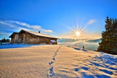 Sneeuwhaas - Oostenrijk - Tirol - sneeuwschoenwandelen reis (2) snow leopard