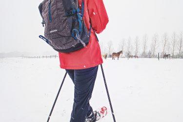 Sneeuwhaas - materiaal - sneeuwschoenwandelen reis (1) snow leopard