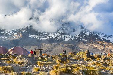 Tanzania - beklimming Kilimanjaro - trektocht Uhuru Peak 5895m Machame Northern Circuit - Snow Leopard (2)