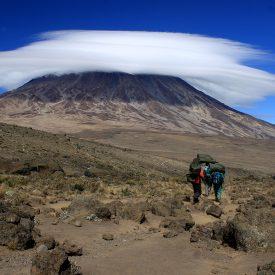 Tanzania - beklimming Kilimanjaro - trektocht Uhuru Peak 5895m Machame Northern Circuit - Snow Leopard (7)