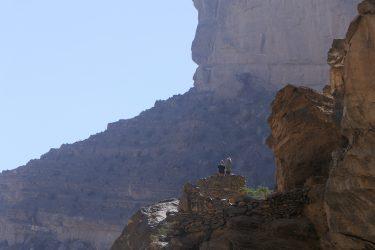 Wandelreis Oman Bergen Woestijn Muscat Midden-Oosten Snow Leopard (20)