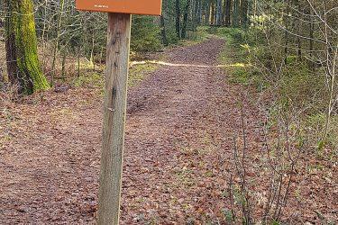 Wandelvakantie Diever Drenthe - Mooiewandeling - Snow Leopard (4)